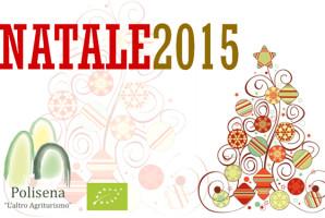Natale 2015 Articolo